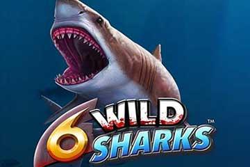 Spela 6 Wild Sharks slot