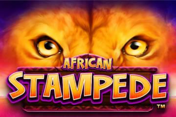 African Stampede video slot