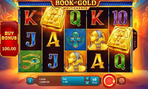 Book of Gold Multichance slot