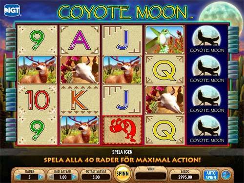coyote moon slots software