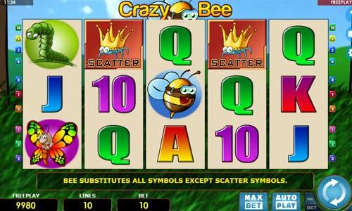Crazy Bee videoslot