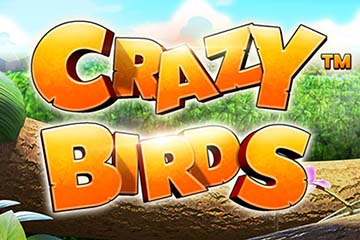 Crazy Birds video slot
