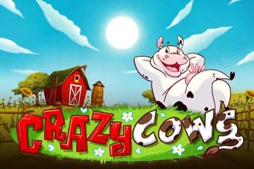 Crazy Cows video slot