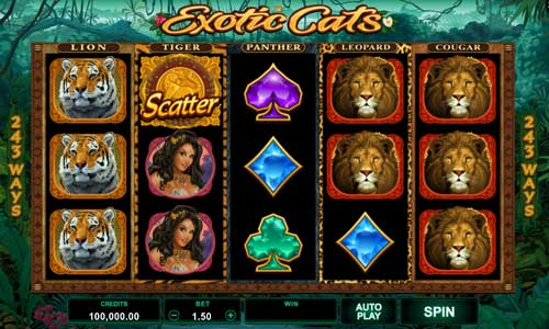 Exotic Cats videoslot
