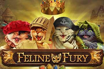 Spela Feline Fury kommande slot