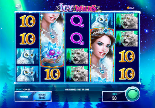Icy WIlds slot