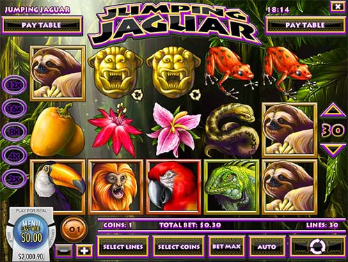 Jumping Jaguar slot