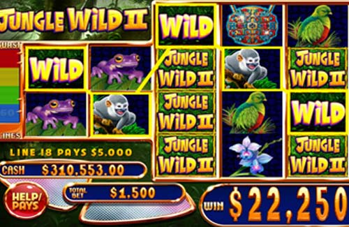 Jungle Wild 2 videoslot