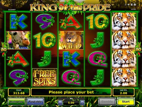 King of the Pride free slot