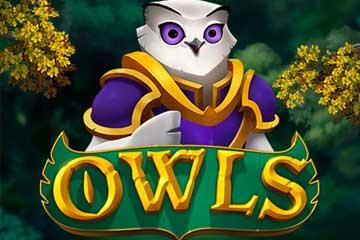 Owls slot