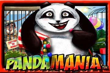 Pandamania video slot