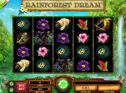 Rainforest Dream slot