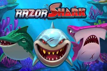 Razor Shark video slot