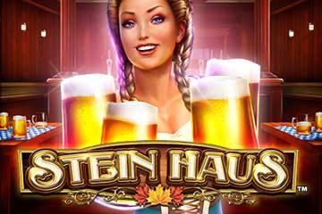 Stein Haus video slot
