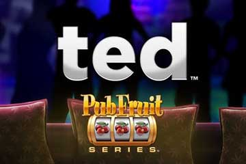 Ted Pub Fruit video slot
