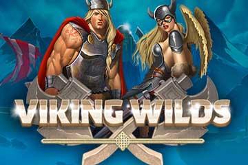 Viking Wilds slot