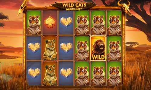 Wild Cats Multiline videoslot