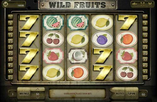 Wild Fruits videoslot