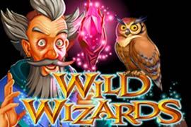 Wild Wizards video slot