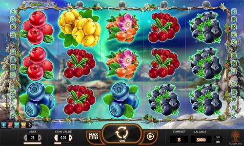 Winter Berries slot